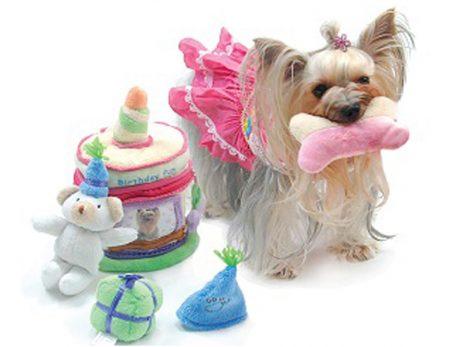Birthday-Suprise-Cake-Toy