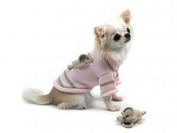 Elephant Sweater On Dog