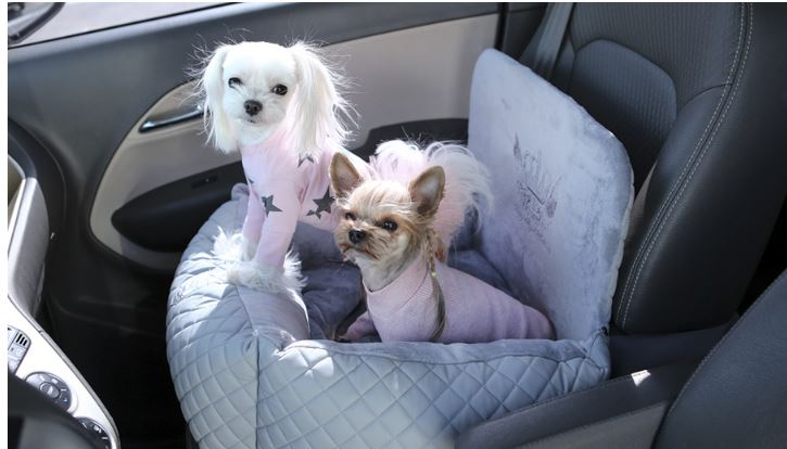 Puppy Angel Dog Car Seat